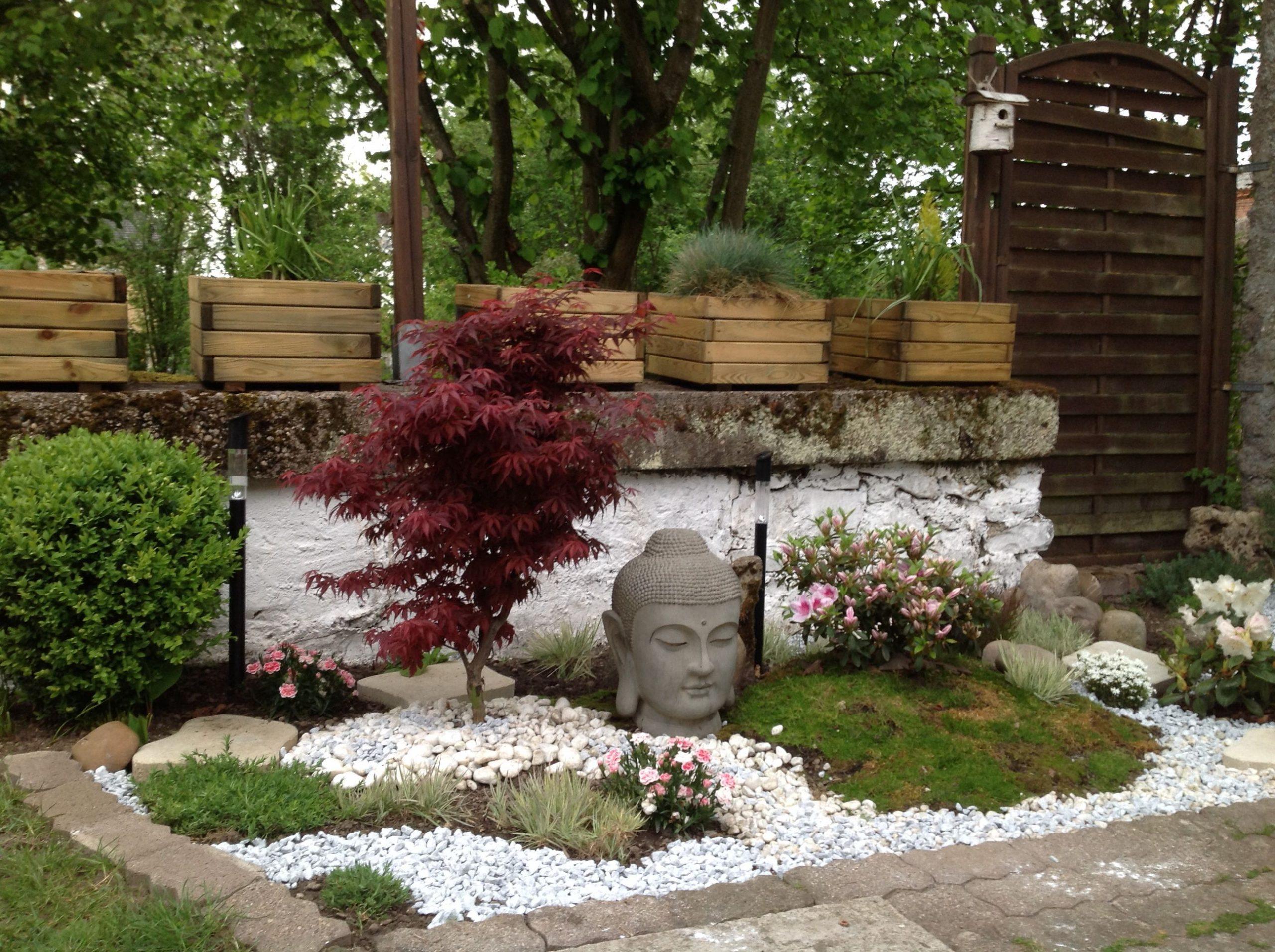 Mini Buddha Garden In My Home | Bouddha Jardin, Jardin ... intérieur Jardin Avec Galets Blancs