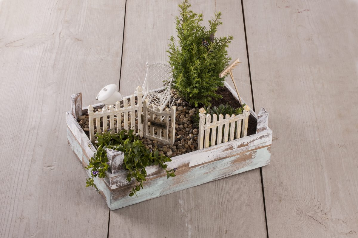 Mini-Gardening, Créer Son Petit Jardin Zen. - Le Loisir Créatif à Accessoires Pour Jardin Japonais