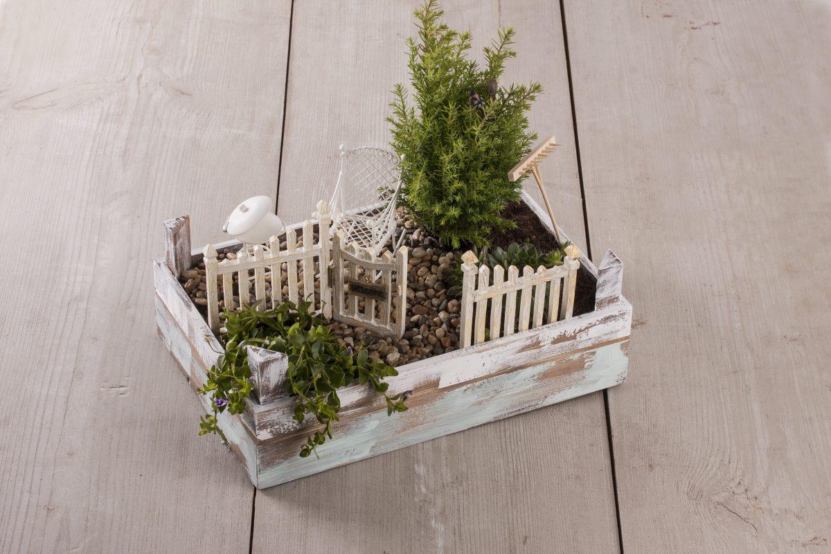 Mini-Gardening, Créer Son Petit Jardin Zen. - Le Loisir Créatif avec Créer Un Mini Jardin Japonais