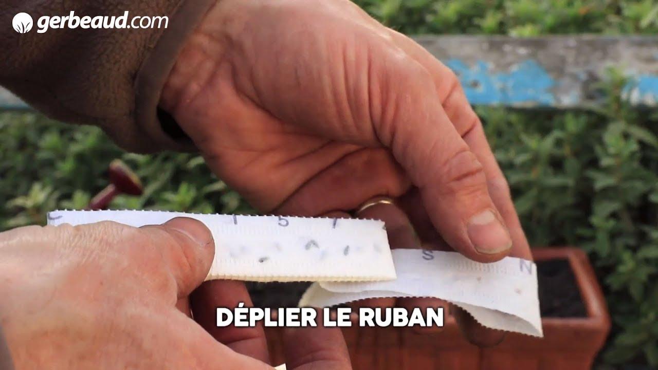 Mini Semoirs À Main Et Semoir Maraîcher : Conseils D'utilisation encequiconcerne Semoir Jardin Potager