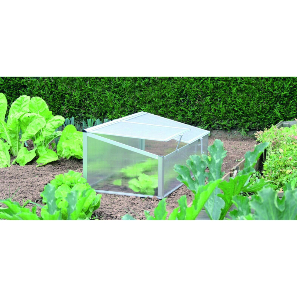 Mini-Serre À Double Auvent pour Mini Serres De Jardin