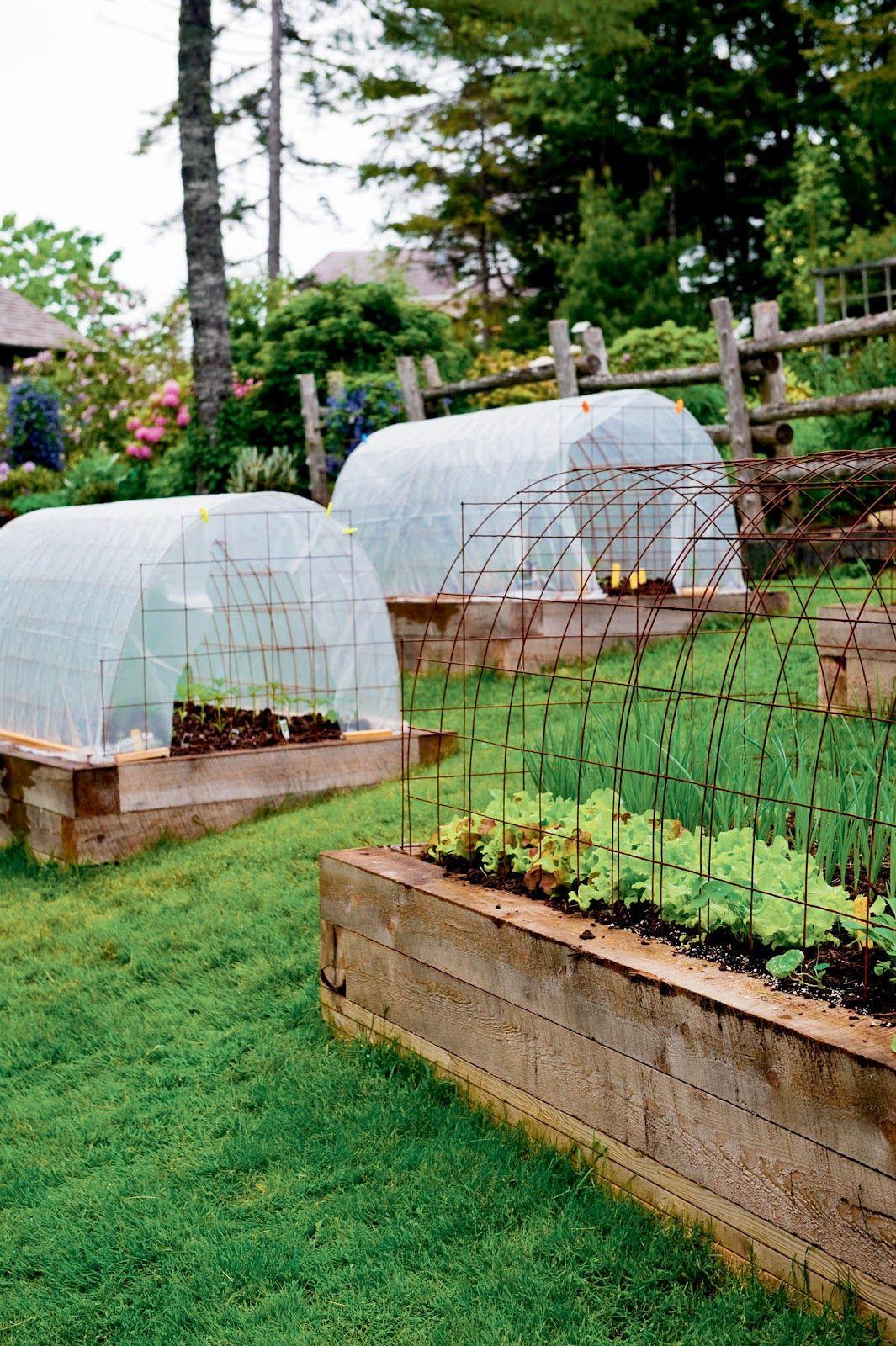 Mini Serres | Jardins, Idées Jardin Et Amenagement Jardin pour Petites Serres De Jardin
