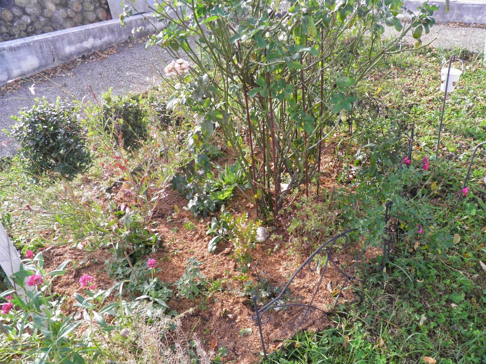 Mon Jardin Quercynois: Novembre 2014 tout Copeaux De Bois Jardin