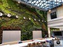 Mur Végétal, Jardin Vertical : Les Technologies Des Murs ... intérieur Bonne Terre Pour Jardin