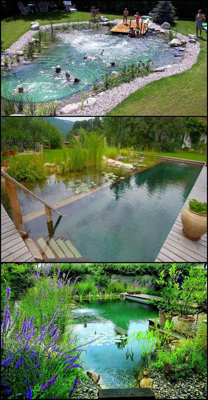 Natural Swimming Ponds, Also Called Natural Pools, Are A ... avec Accessoires Pour Bassin De Jardin