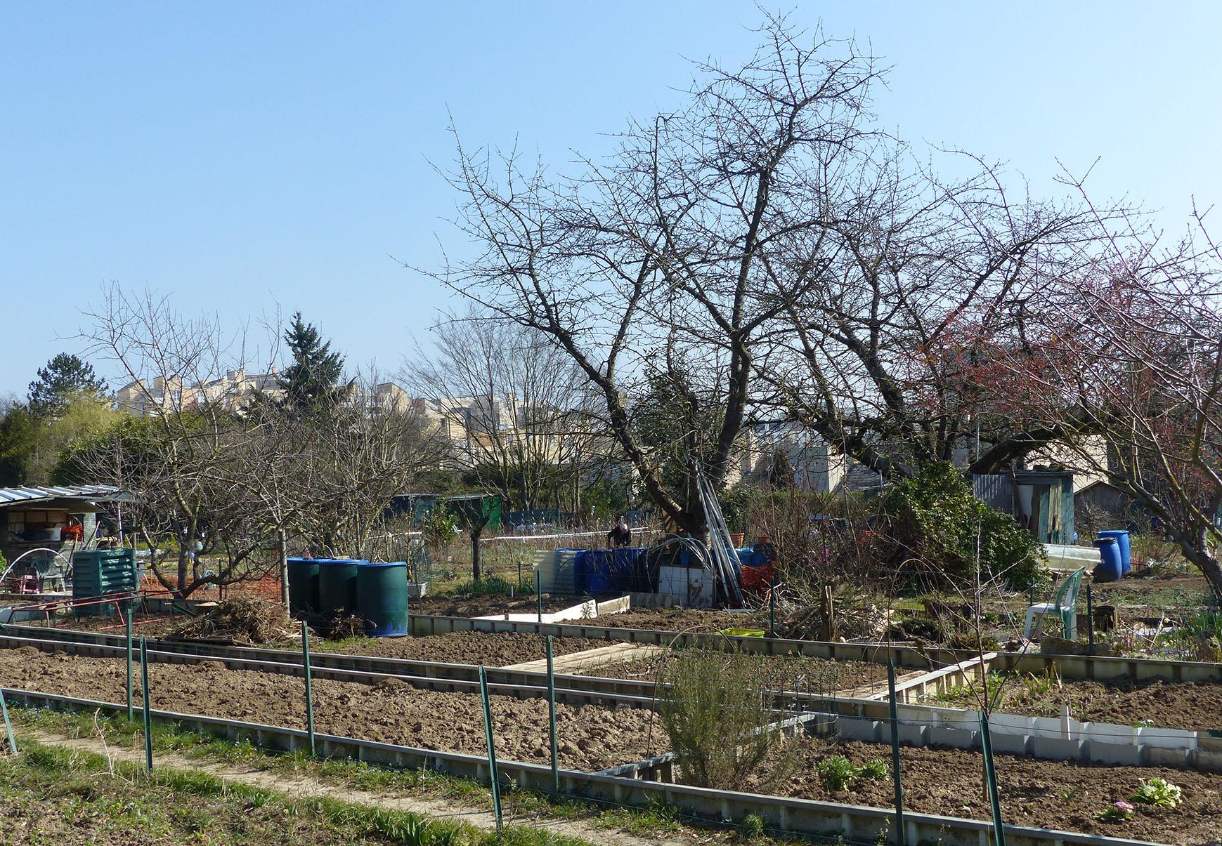 Nature En Ville À Cergy-Pontoise | De La Sciure Pour Le Jardin à Copeaux De Bois Jardin