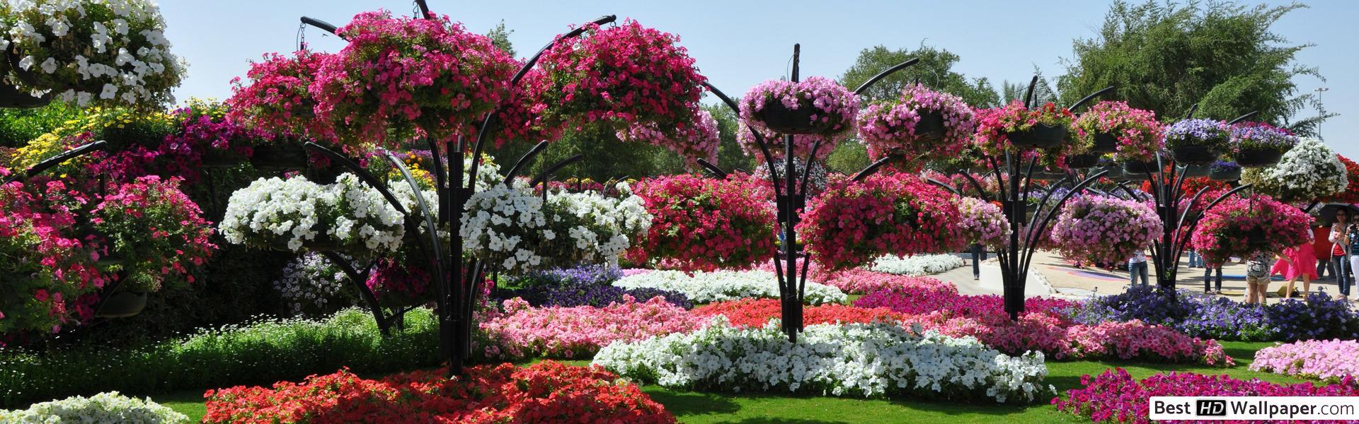 Nature - Jardin Fleuri Hd Fond D'écran Télécharger encequiconcerne Modèle De Jardin Fleuri