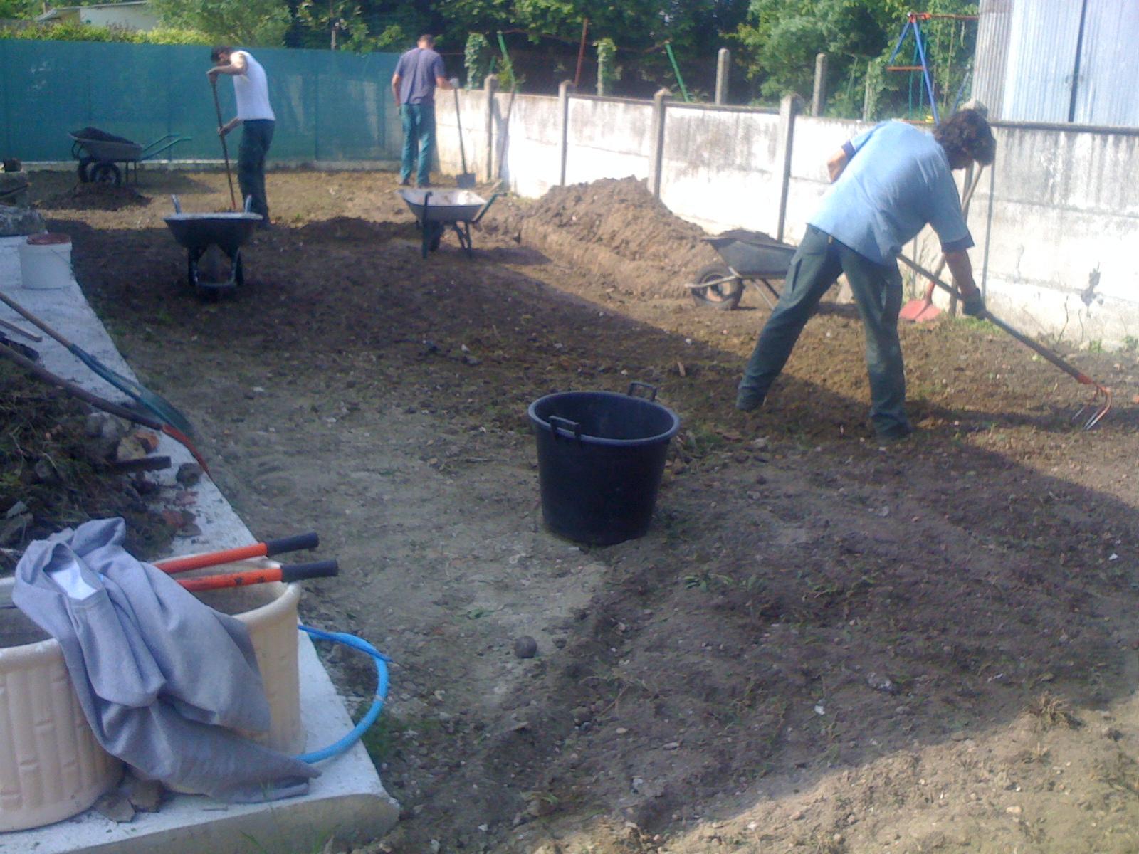 Nettoyage Jardin Bastide | Paysagiste Bordeaux serapportantà Entretien Jardin Bordeaux
