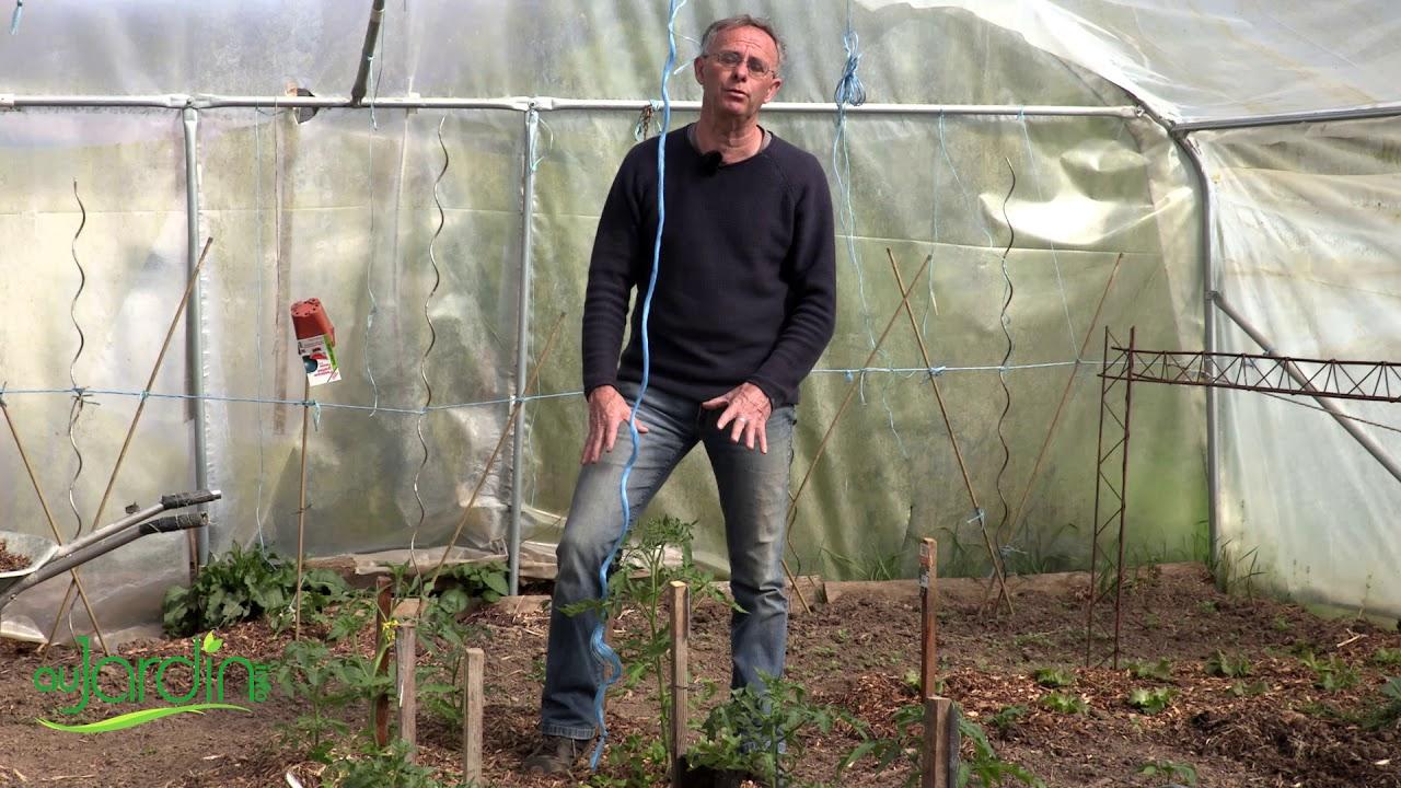 Optimiser L'espace De Culture D'une Serre concernant Fonctionnement D Une Serre De Jardin