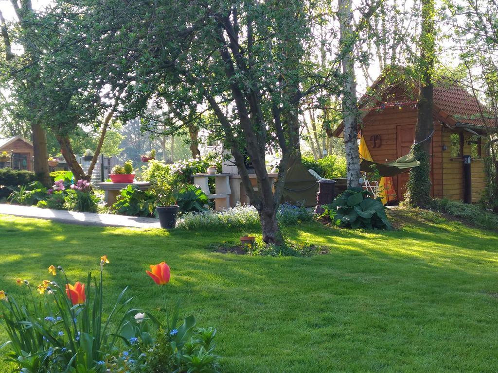 Orman Evi La Gypsy Caravan (Fransa Rivière) - Booking dedans Bache Pour Salon De Jardin