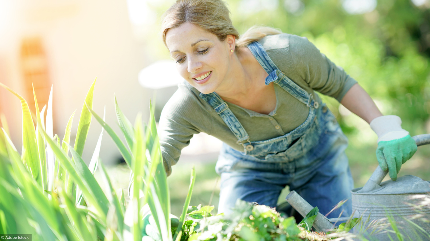 Outils De Jardin - Conseils En Plantation - Agenda Du ... à Faire Un Jardin Pour Les Nuls