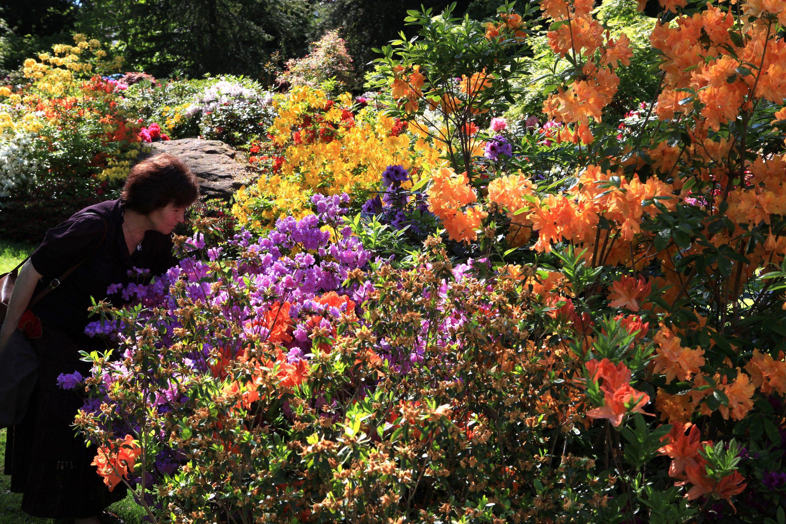 Parc Zoologique Et Botanique Mulhouse | Ville De Mulhouse à Jardin Botanique Emploi