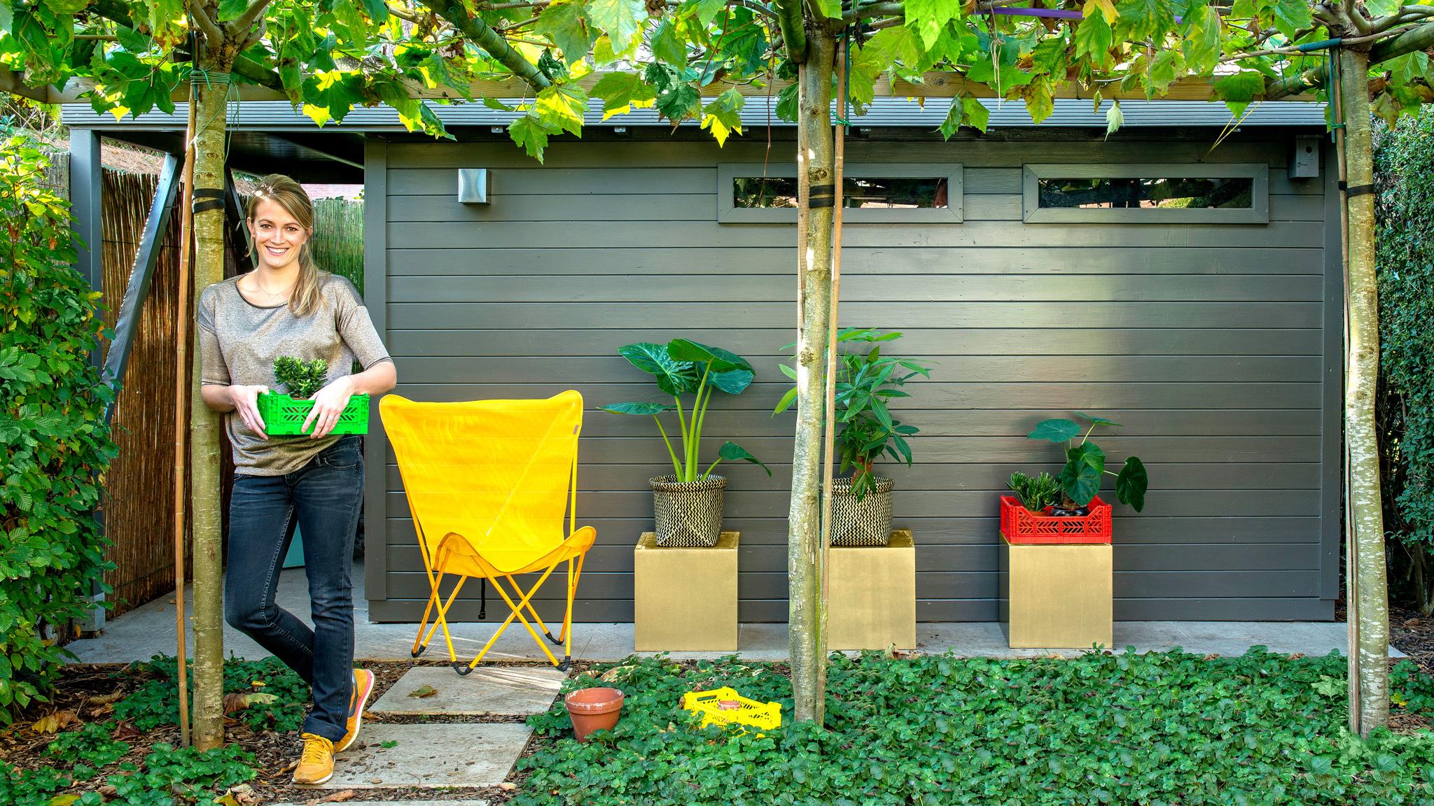 Peint En Un Weekend : Abri De Jardin, Mur, Porte D'entrée ... destiné Peinture Abri De Jardin