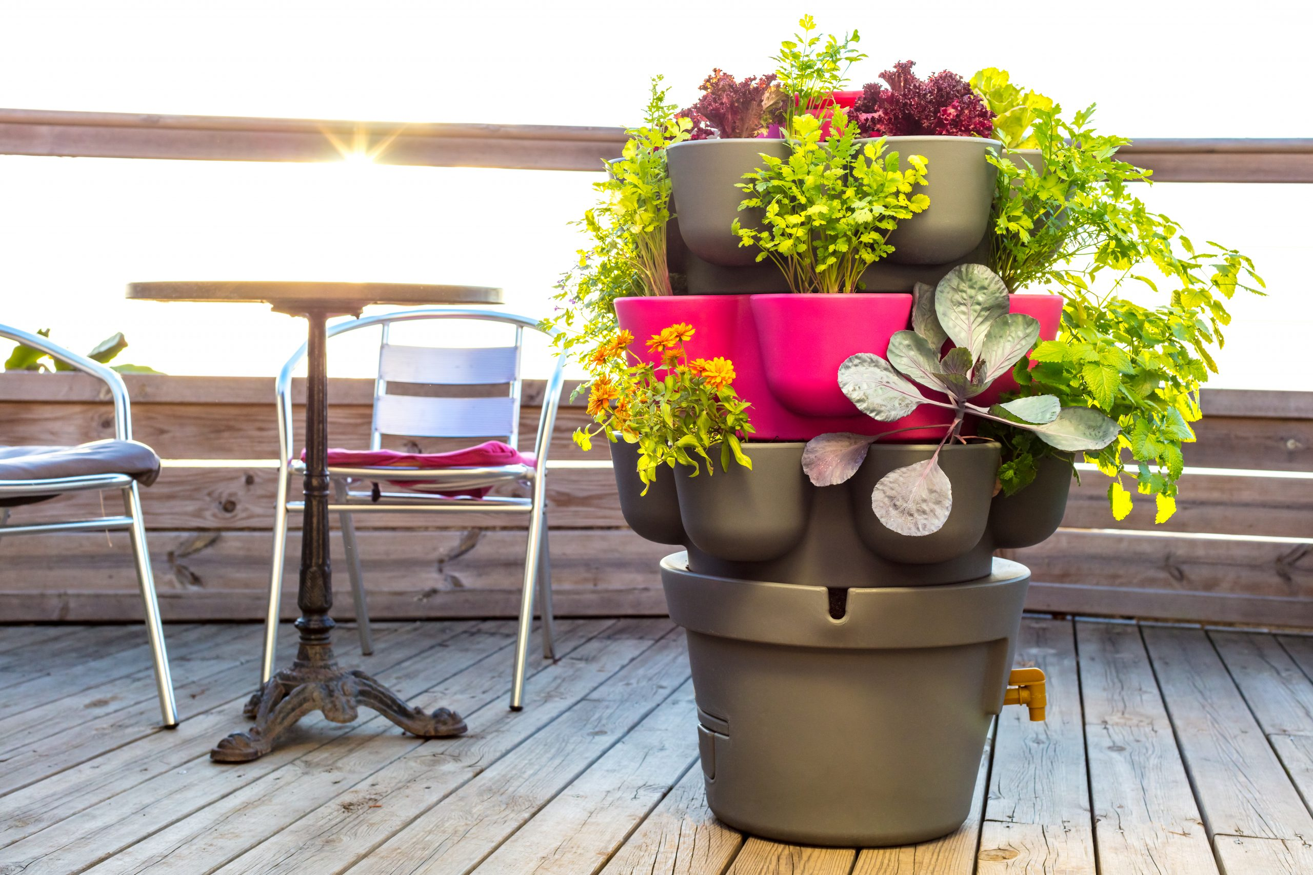 Permaculture : Comment Cultiver Son Potager Bio Sur Son Balcon ? pour Faire Un Jardin Sur Son Balcon