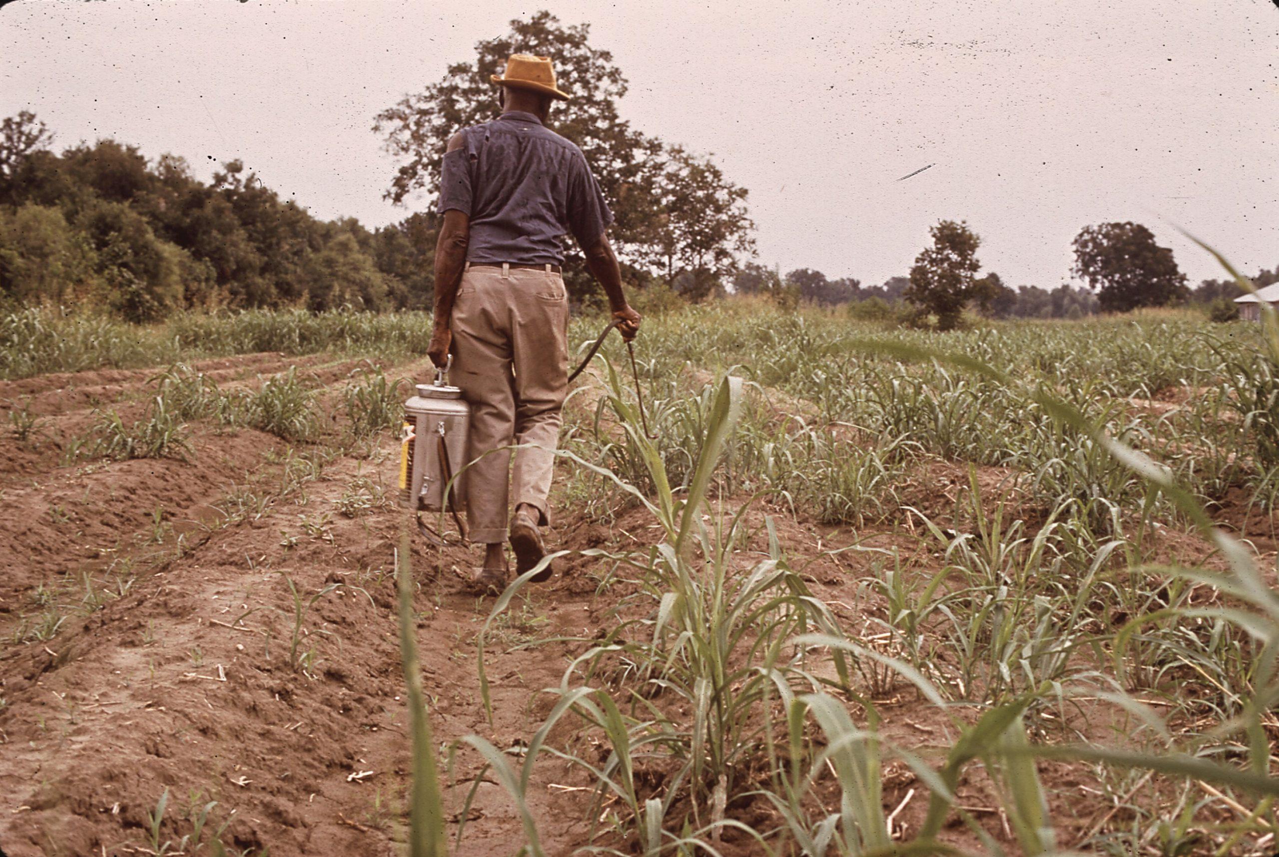Pesticide - Wikiwand tout Pulverisateur Kb Jardin