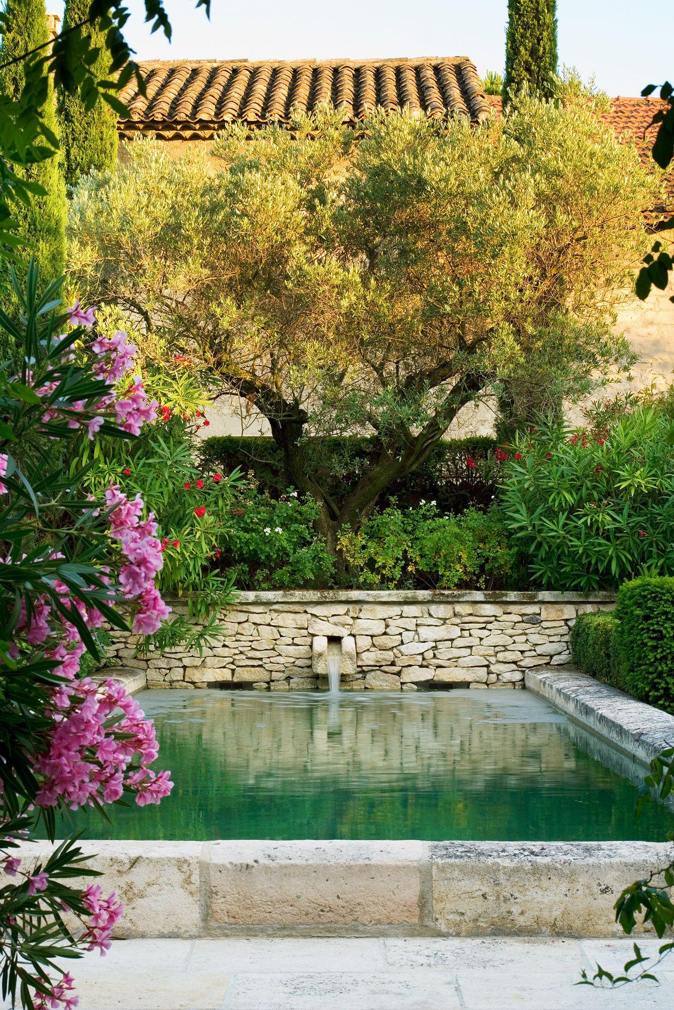 Pierre Bergè's Garden In Provence | Jardin D'eau, Jardin ... intérieur Bassin De Jardin En Pierre