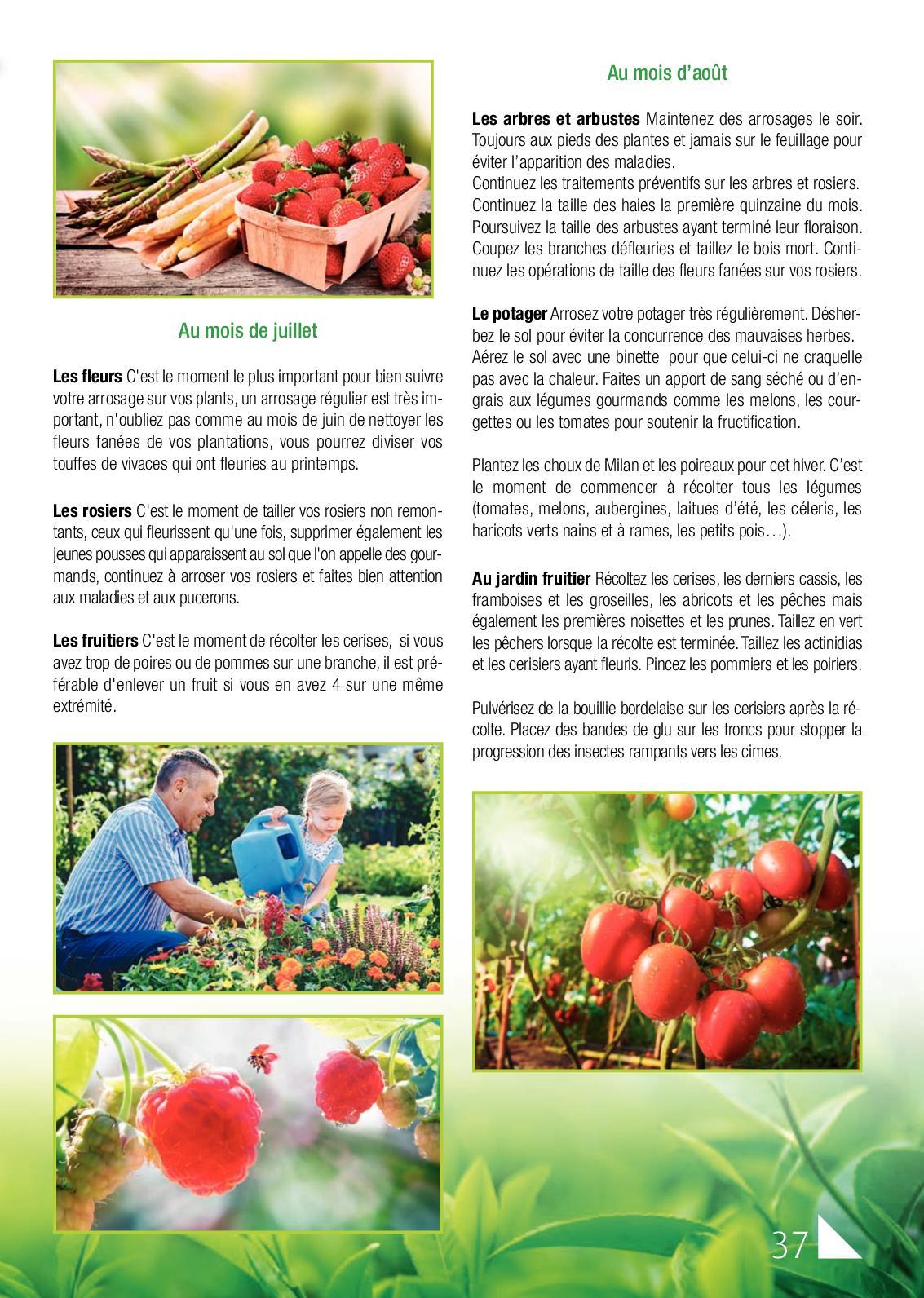 Plaine Vue Magazine N28 - Calameo Downloader intérieur Sang Seché Jardin