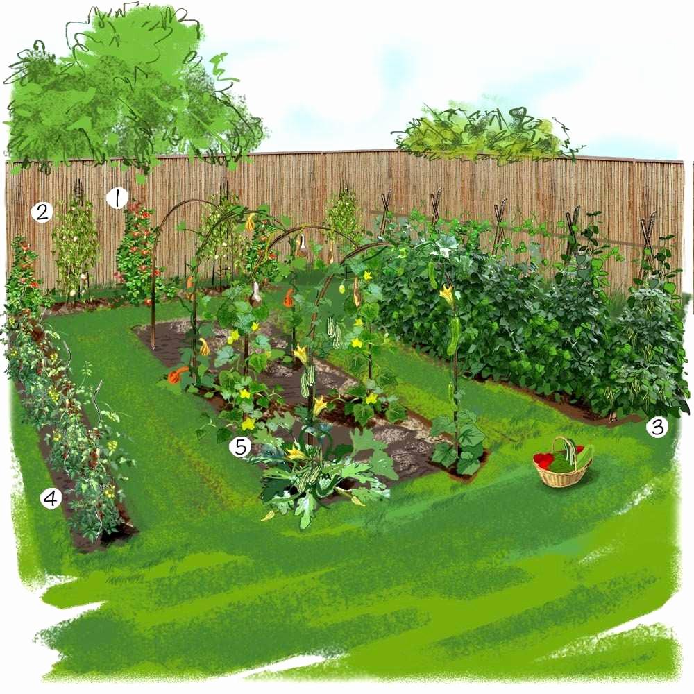 Plan De Jardin Gratuit Schème - Idees Conception Jardin pour Créer Un Plan De Jardin Gratuit