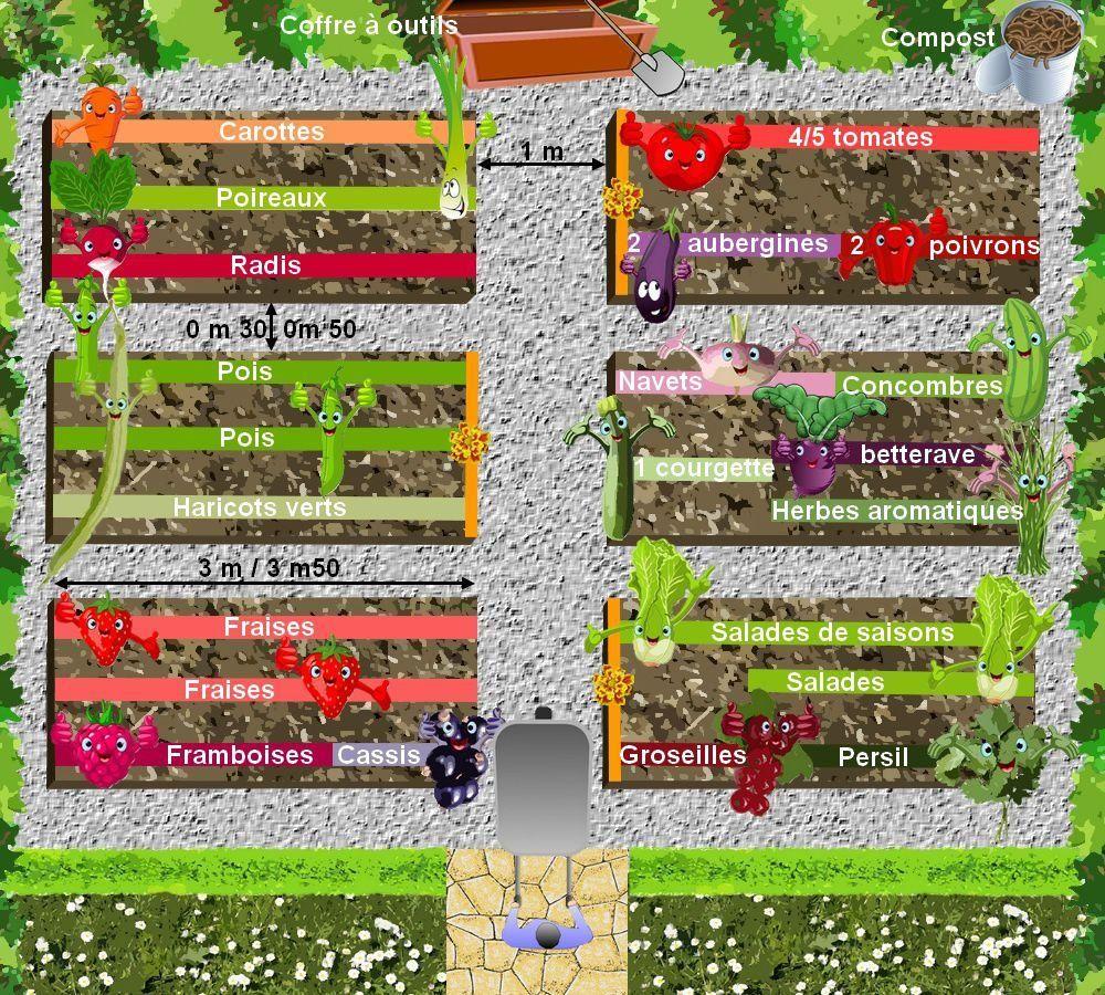 Plan De Potager: Céer Son Potager Biologique   Potager ... concernant Plan Jardin Potager Bio
