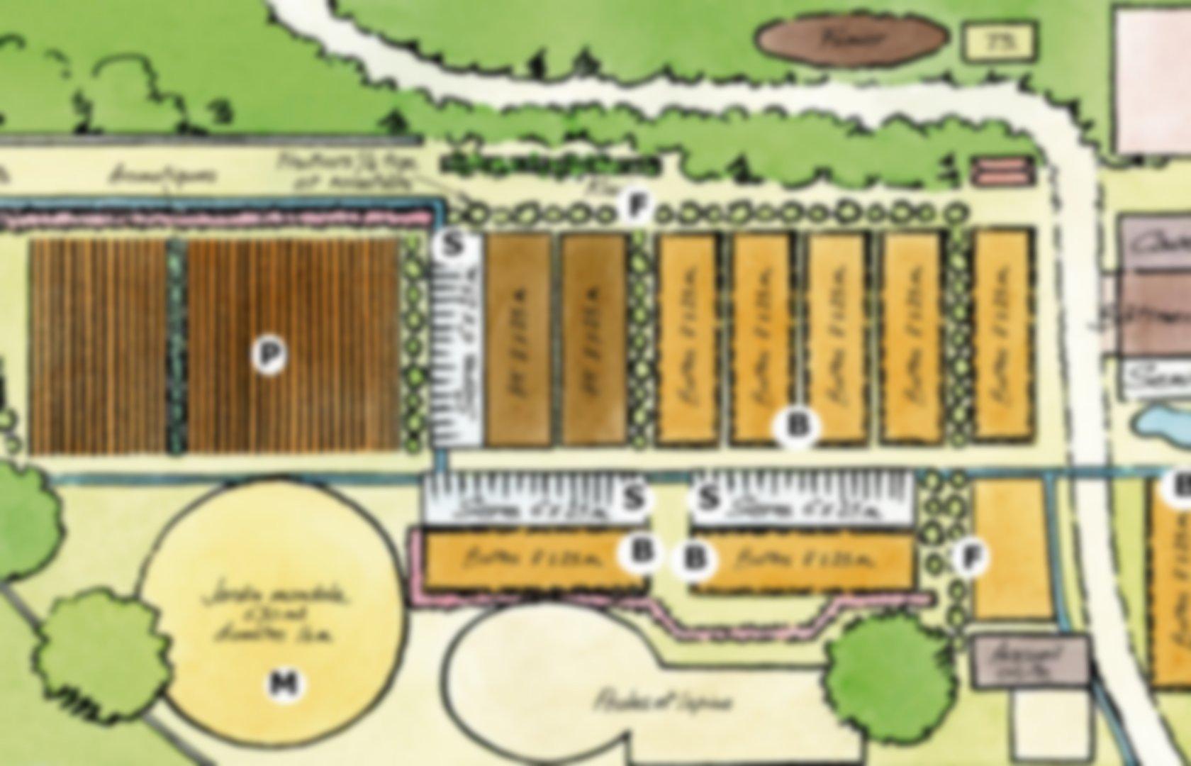 Plan, Organisation Du Potager | Pearltrees pour Organisation D Un Jardin Potager