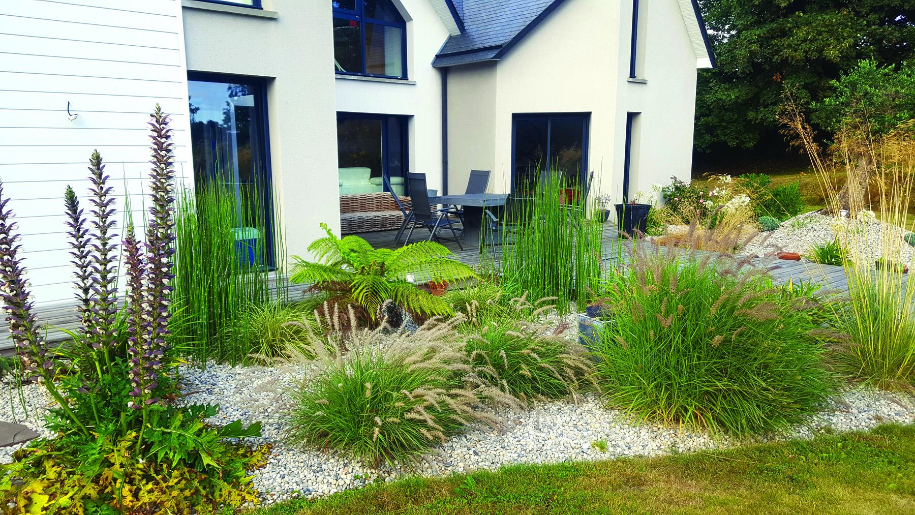 Plante Pour Jardin - Aménagement De Jardin   Paysages Conseil intérieur Amenagement Jardin Avec Graminees