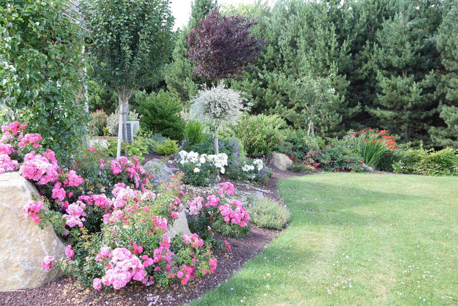 Plante Pour Jardin - Aménagement De Jardin | Paysages Conseil serapportantà Exemple D Aménagement De Jardin