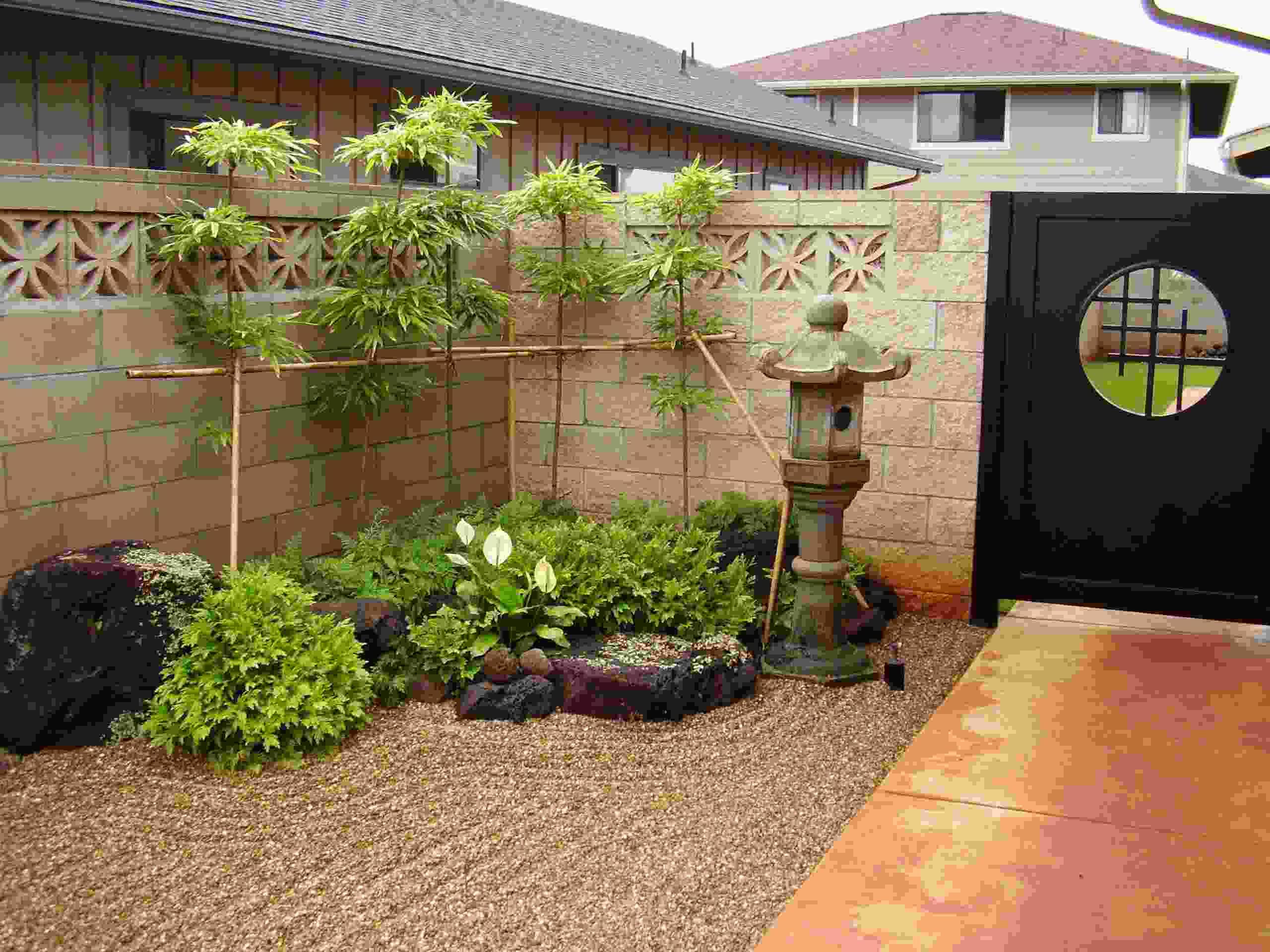Planter Des Bambous Dans Son Jardin - Quelle Bonne Idée! intérieur Idee De Plantation Pour Jardin