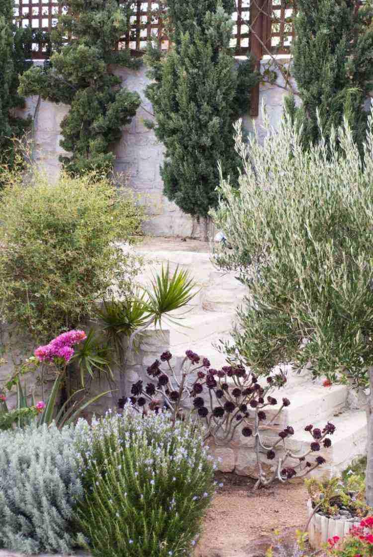 Plantes Et Aménagement Jardin Méditerranéen – 79 Idées encequiconcerne Exemple De Jardin Méditerranéen