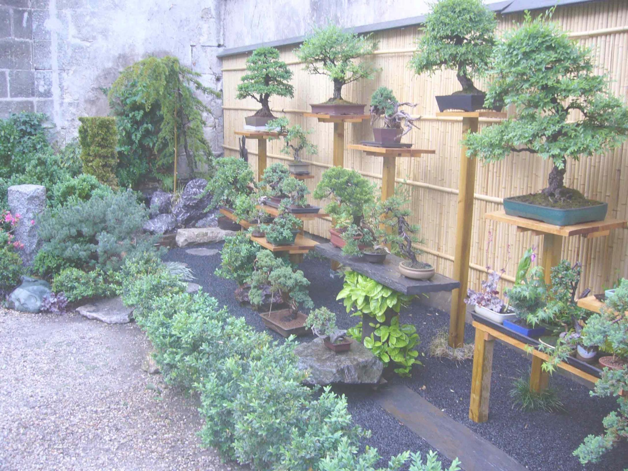 Plantes Pour Jardin Japonais Miniature - Alkotla. pour Plantes Pour Jardin Japonais