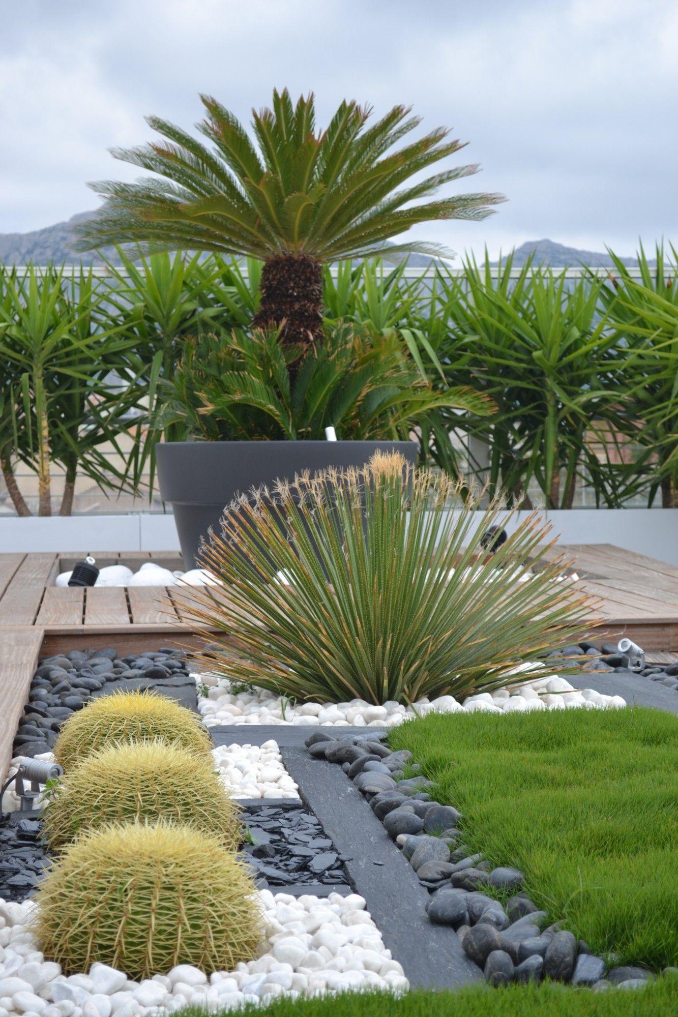 Plaques De Schiste, Espace Végétalisé Sec Sur Terrasse En ... intérieur Amenagement Jardin Exterieur Mediterraneen