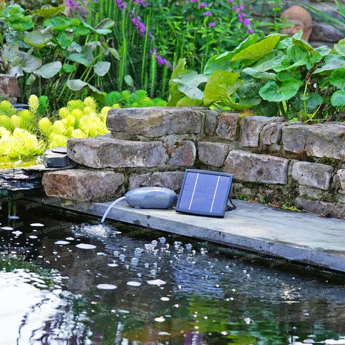 Pompe D'aération Solaire Pour Bassin dedans Pompe Pour Bassin De Jardin