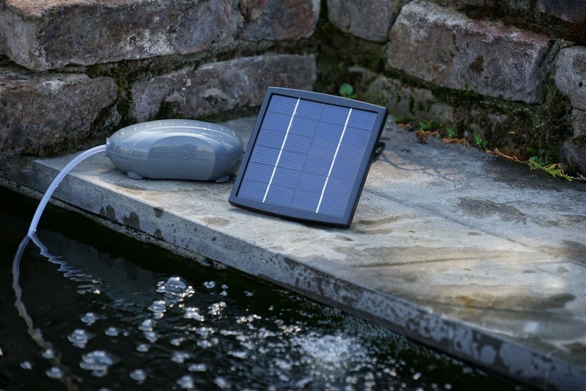 Pompe Pour Bassin Solaire [Siaya County] pour Pompe Pour Bassin De Jardin