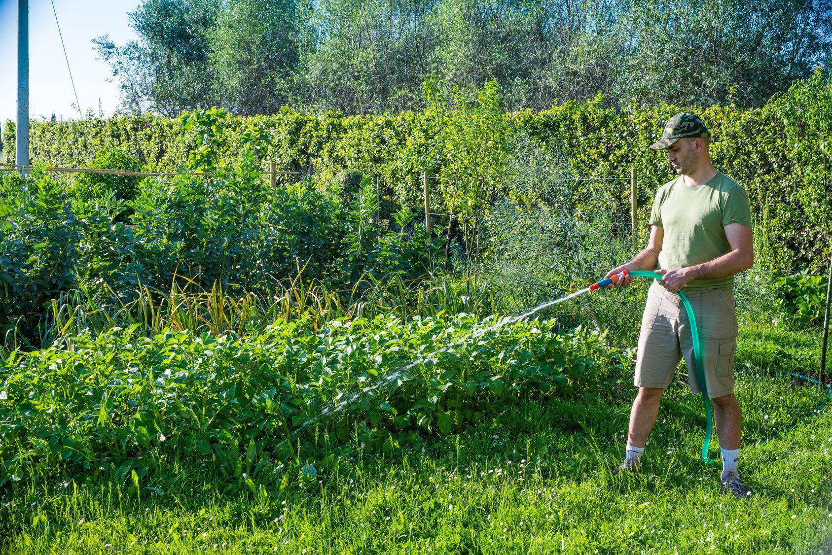 Pompe Pour Puits : Une Solution Pratique Pour L'arrosage ... avec Pompe Pour Arroser Le Jardin
