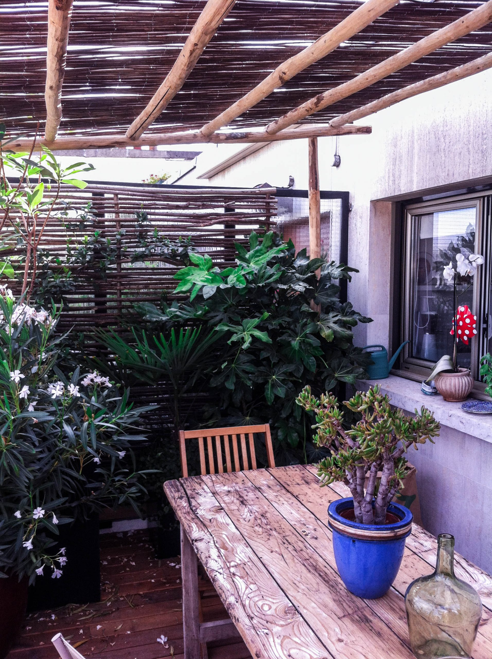 Portfolio De Swandy Wenker | 1G Solutions avec Paillote Jardin