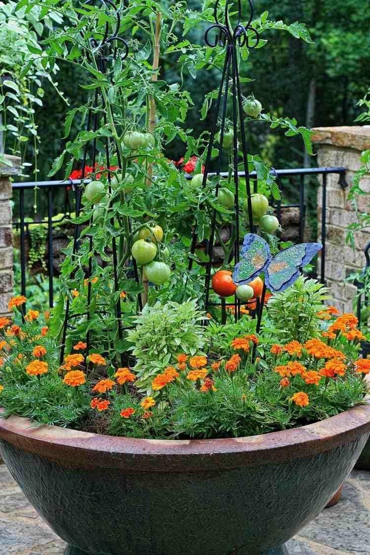 Potager Balcon - Choix De Variétés, Conseils Pratiques ... pour Jardin En Pots Potager