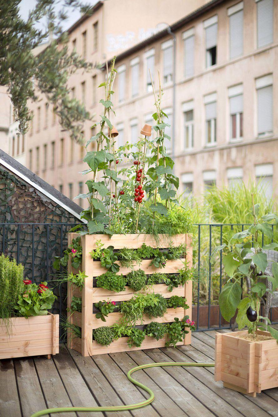 Potager Pour Un Balcon : Notre Sélection | Au Jardin ... dedans Mini Jardin Balcon
