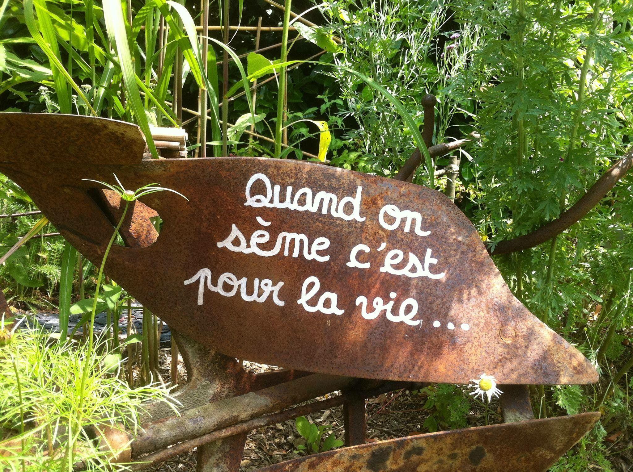Pour Le Jardin | Décoration Jardin Extérieur, Decoration ... à Serre De Jardin Amazon