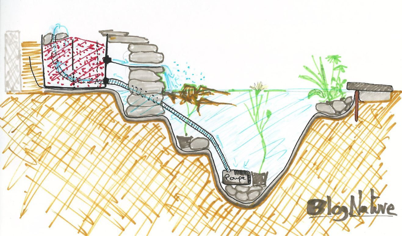 Pourquoi Installer Un Bassin Dans Son Jardin ? Pour Créer Un ... avec Pompe Pour Bassin De Jardin