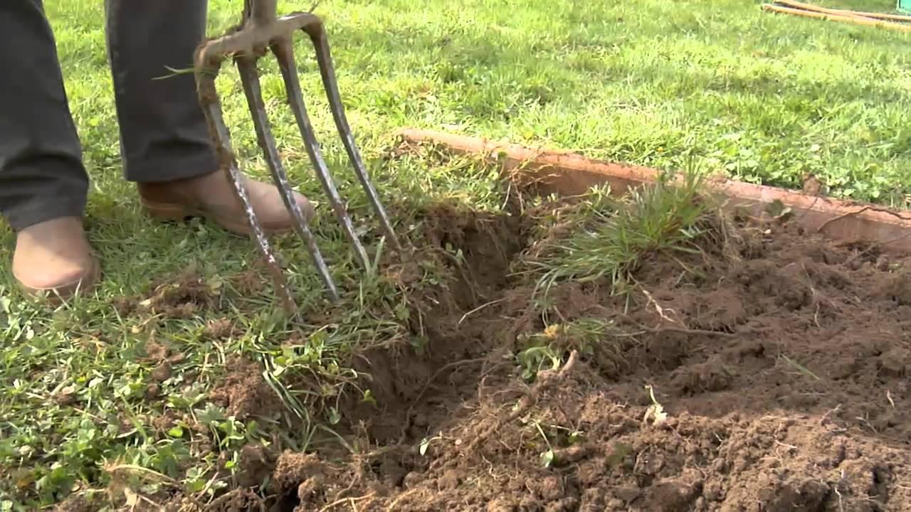 Préparer Sa Terre pour Bonne Terre Pour Jardin