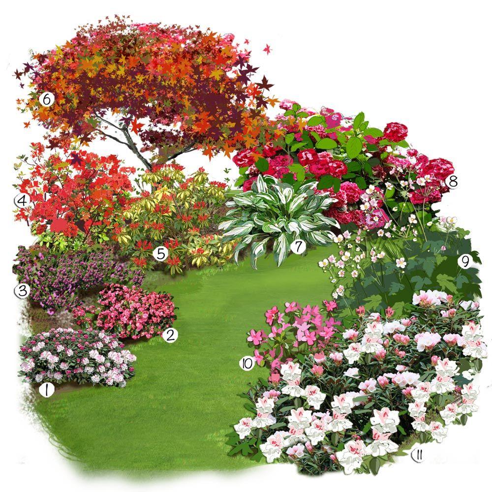Projet Aménagement Jardin : Les Plantes De Terre De Bruyère ... dedans Plante Pour Jardin Japonais