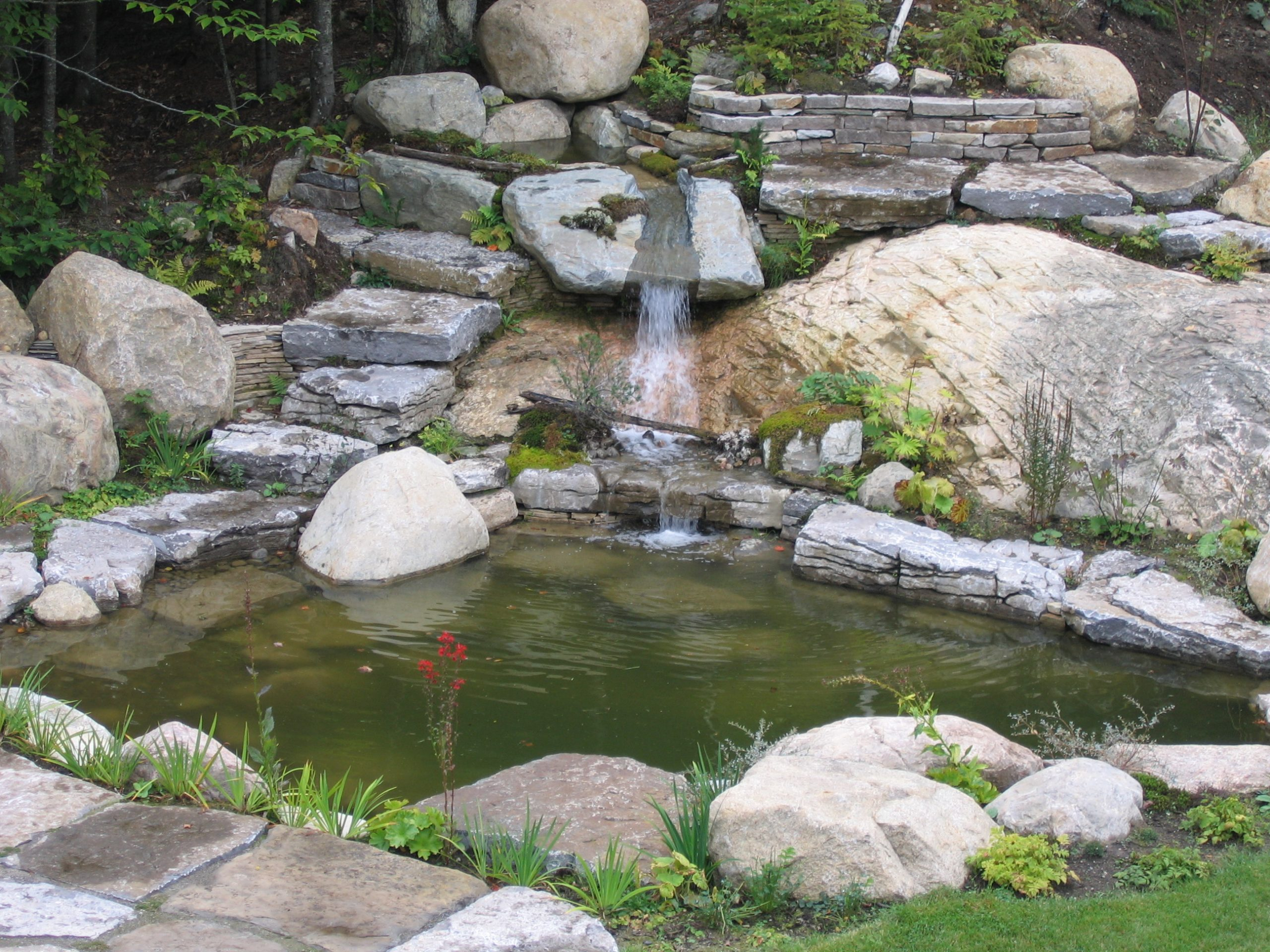 Projet Aménagement Paysager | Jardin D'eau | Maxhorti avec Creation Cascade Bassin Jardin