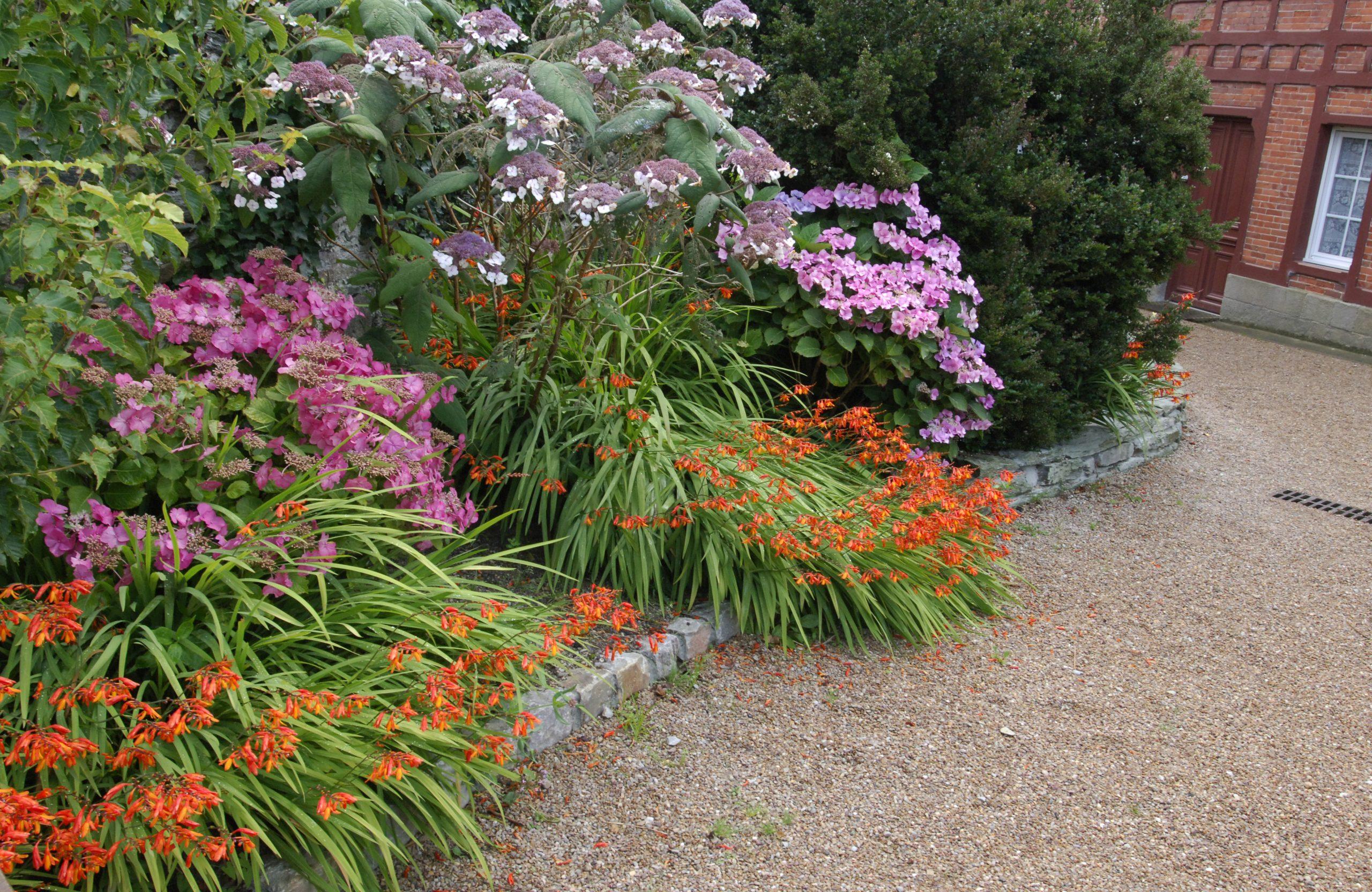Que Planter Dans Une Bordure De Jardin ? tout Bordure De Jardin En Pierre