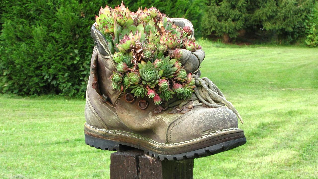 Quelle Chaussure Choisir Pour Jardiner Cet Hiver ? - Parc ... à Chaussure De Jardin