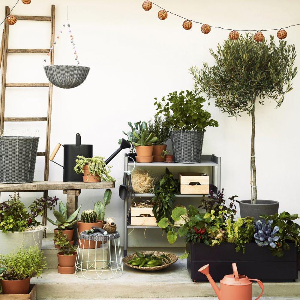 Quels Arbustes Pour Un Balcon ? - Marie Claire intérieur Petit Salon De Jardin Pour Balcon