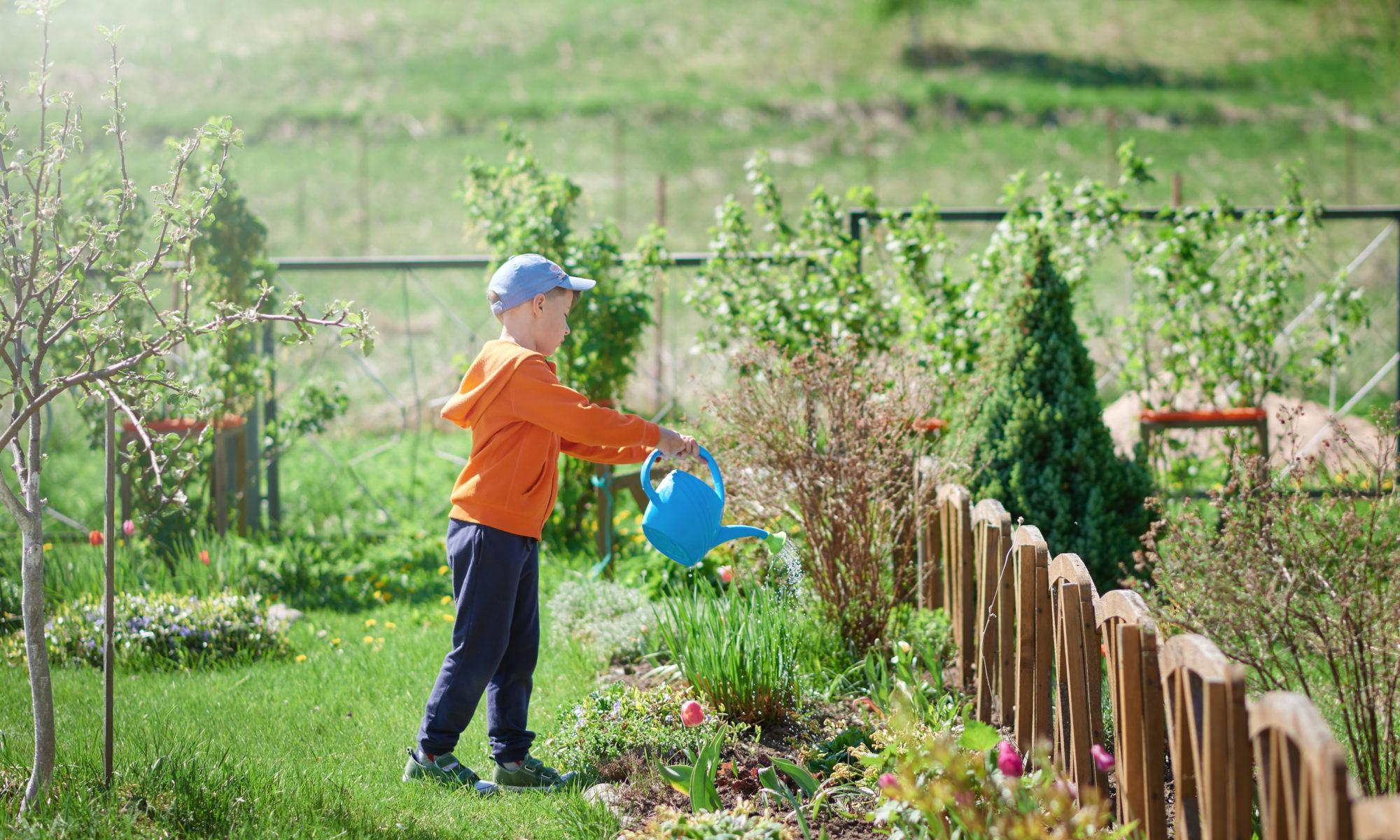 Réaliser Un Système D'irrigation Pour Bien Entretenir Son ... destiné Systeme Arrosage Jardin Potager