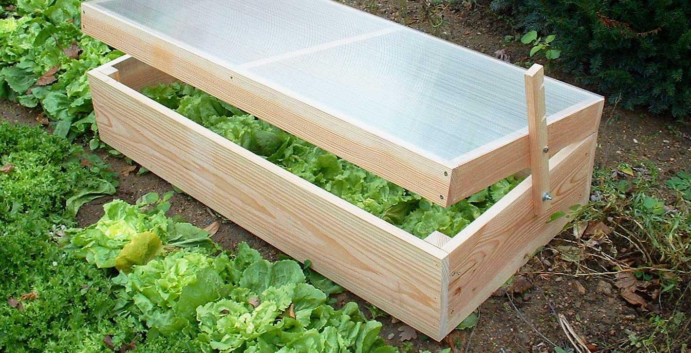 Récoltez Vos Légumes Plus Tôt En Suivant Les Conseils De ... concernant Chassis De Jardin
