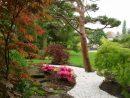 Retenues Talus Bois Plantes Aromatiques Jardin Médiéval ... serapportantà Creation Jardin Japonais