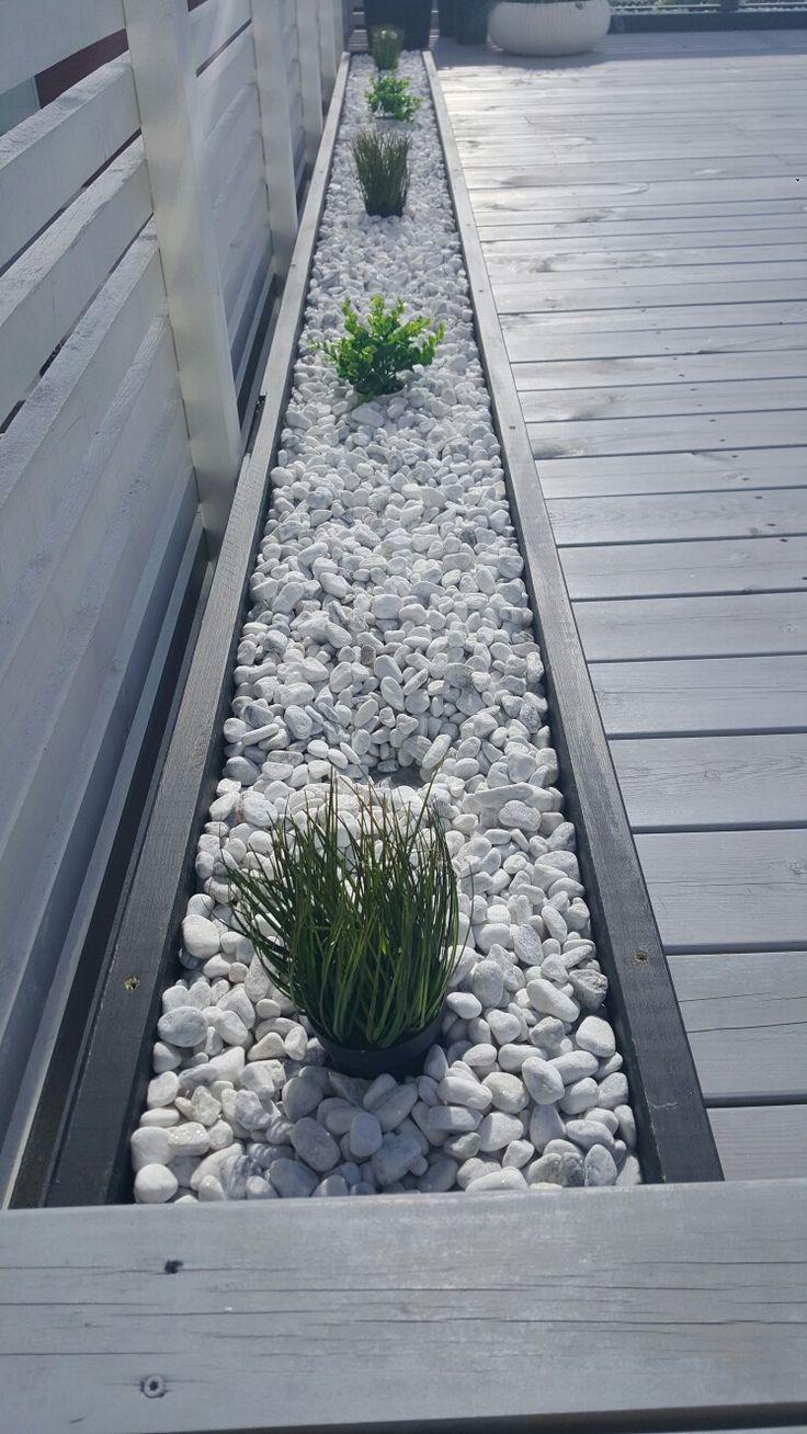 Rocks And Plants, #gardendesignideasborders #plants #rocks ... intérieur Terrase De Jardin