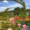 Rouen Ve Giverny – Gezgin Bilgin concernant Salon Jardin Alice Garden