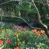 Rouen Ve Giverny – Gezgin Bilgin destiné Salon Jardin Alice Garden